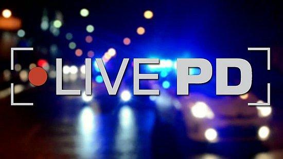 live-pd4.jpg